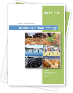 Resilience Action Strategy