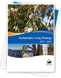 Sustainable Living Strategy