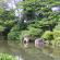 Community invited to Japanese garden unveiling