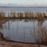 Turtle Lagoon at Lake Boga