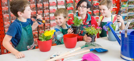 Star Wars, star gazing, flowers and balloons – a full school holiday program at the Library
