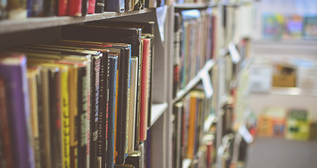 What should your library include Robinvale? Community survey out now