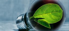 Councils join for green energy and bill