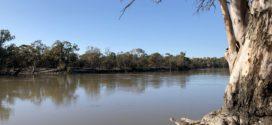 Robinvale Riverfront Master Plan